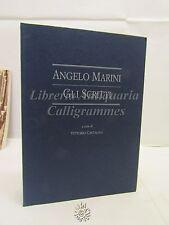 Gli Scritti, Angelo Marini, Ed. Banca Popolare di Verona 1993, Storia