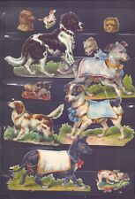 Nice Packet of Vintage Scraps Dogs,Largest 125 x 85 mm  SP33