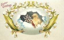 Easter~Chick & Lily of the Valley Hatch Out of Big Egg Shell~Emboss~Germany 1908