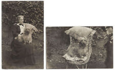 DOG Cute Dog with Lady on Wicker Chair, 2x RP Postcards Unused