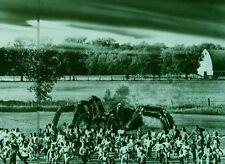 KINGDOM OF THE SPIDERS  1975 VINTAGE PHOTO ORIGINAL #13 SCI-FI  HORROR B-MOVIE