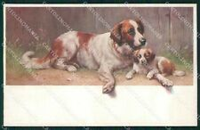 Reichert Saint Bernard Dog MM Wien 765 postcard cartolina QT7110