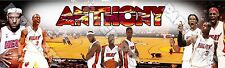 "NBA MIAMI HEAT Poster 30"" x 8.5"" Custom Name Painting Printing"