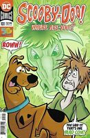 Scooby-Doo Where Are You Comic 101 Cover A 2019 Sholly Fisch Randy Elliott DC