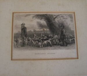 English,19th Century Engraving-  Exercising Hounds. (Fox Hunting.)