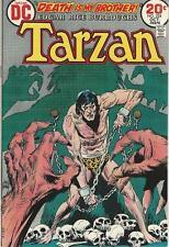 DC Comics Tarzan Of The Apes (1972 Series) # 224 FN/VF 7.0