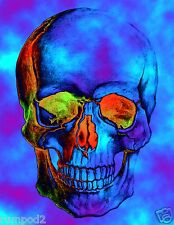 Human Skull Poster/Psychedelic/ColorfulFront View/Crazy Image/Skeleton/17x22