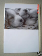 Emotional Rescue Pups Blank Greetings Card