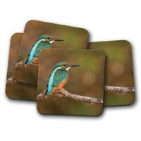 4 Set - Beautiful Green Kingfisher Coaster - Bird River Fishing Cool Gift #15129