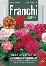 Semi/Seeds GERANIO ZONALE a Grandi Fiori Multicolor