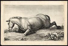 Antique Master Print-HORSE-INJURY-WOUND-Huchtenburgh-vd Meulen-Le Brun-ca. 1690