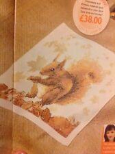 (I) Autumn Gatherer Wildlife Red Squirrel Cross Stitch Chart