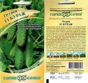 world best tasty F1 Pickling  cucumber 10x seeds from Russia mini sweet gherkin