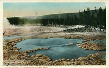 Biscuit Basin Scenic View Geysers Yellow Stone National Park Postcard