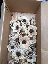 Botanicals & Dried Floral Supplies for Seasonal Accent Flowers - Backordered