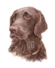 FLAT COAT RETRIEVER Liver no2.    3 Blank Dog greeting cards by Christine Groves