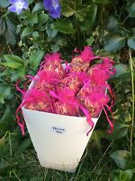 box 25 pink organza bags dried red rose petals flowermix wedding confetti throws