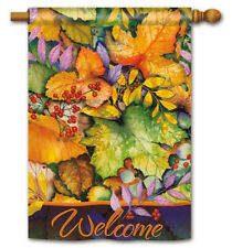 "COLORS OF AUTUMN 2 Sided Welcome Message Fall Harvest 28""x40"" Large Banner Flag"