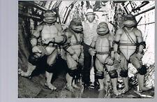 Pressefoto - Turtles ( Jim Henson )