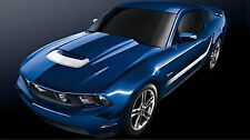 Ford Mustang Decal Kit Stripe Package White 2010-2013 AR3Z6320000KF