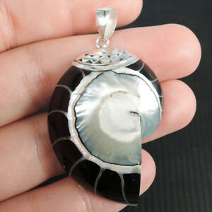 Black NAUTILUS SHELL & 925 Sterling Silver Pendant, Medium Size