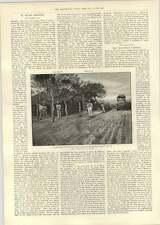 1893 BULAWAYO catturato Edward Jenner RELIQUIA