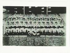 1950 NEW YORK YANKEES TEAM PICTURE with DiMaggio - 8 X 10 PHOTO