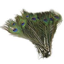 50pcs DIY Peacock Feathers Tail Natural 25-30cm Long For Bouquet Decoration LA3