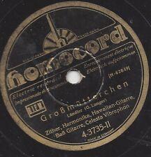Intrumentalquartett mit Hawaiian Guitarre 1930 : Traum der Sennerin
