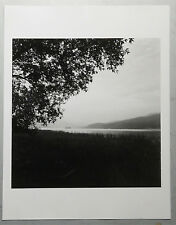 The gelatin silver print black and white photograph 245mm X 245m