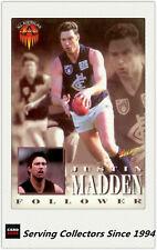 1996 Select AFL Series 1 All Australia Team Card No.243 Justin Madden (Carlton)