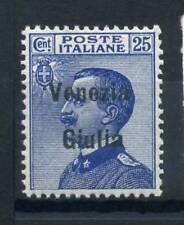 Venezia Giulia 1918 Sass. 24 Nuovo ** 100% Sovrastampati