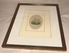 Framed Antique Botanical Book Plate floral flower
