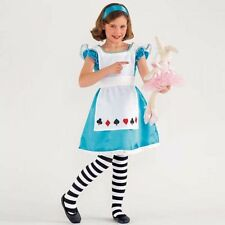 Unbranded Polyester Fairy Tale Fancy Dresses for Girls
