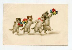 Illustrator Wally Fialkowska Without Signature. Cats