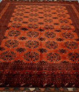 AFGHAN TURKOMAN TRIBAL HAND KNOTTED WOOL RED ORIENTAL RUG CLEANED  8.7 x 11.3