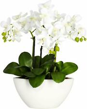 """New! Nearly Natural 4804 15"""" White Orchids Phalaenopsis Flowers Planter Silk"""