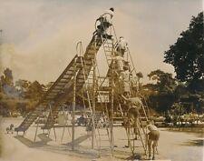 PARIS 1955 - Enfants  Toboggans  Jardin d'Acclimatation - PR 840