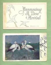 STORKS On Lot of 2 Wonderful 110 Year-Old BIRTH ANNOUNCEMENT Vintage Postcards