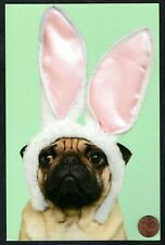 Easter Puppy Dog Pug Bunny Rabbit Ears - Glittered Large - Easter Greeting Card
