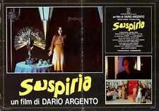 Suspiria Poster 03 Metal Sign A4 12x8 Aluminium