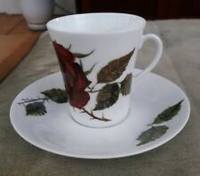 Arabia Finland Red Rose RUUSU Tea Cup & Saucer Set Designed by Anneli Qveflander