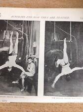 f1b  1895 Picture Circus Acrobats The Hanlon Troupe