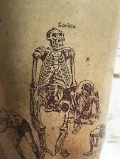 vintage ceramic mug gorilla skeleton wrestling men In Swim Suits circus