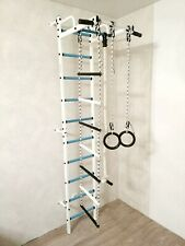 Swedish Wall Stairs Jungle Gym Kids Indoor Home