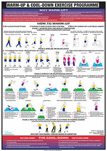 Warm Up Cool Down Poster Exercise Chart