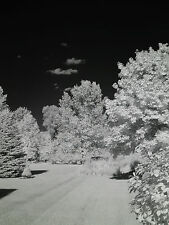 Nikon D7000 830nm Black And White Deep Contrast IR Infrared converted camera!