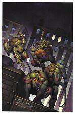 Teenage Mutant Ninja Turtles Urban Legends 1 Shah Planet Awesome Variant Signed