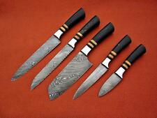 CUSTOM MADE DAMASCUS BLADE 5Pcs. CHEF/KITCHEN KNIVES SET DC 1048-5-H