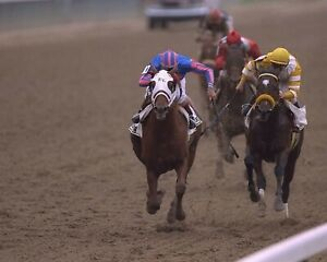 THUNDER GULCH 8X10 PHOTO HORSE RACING PICTURE RACE ACTION